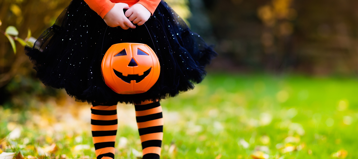 Little Girl Holding Jack O Lantern