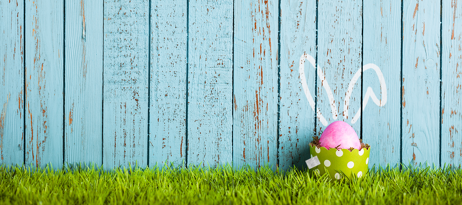 Easter Egg in Grass with Bunny Ears